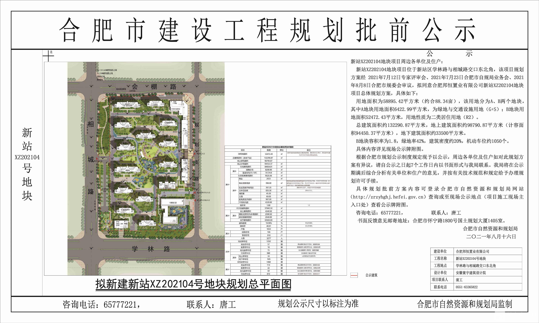新站202104地块公示图-模型1 副本_副本_副本